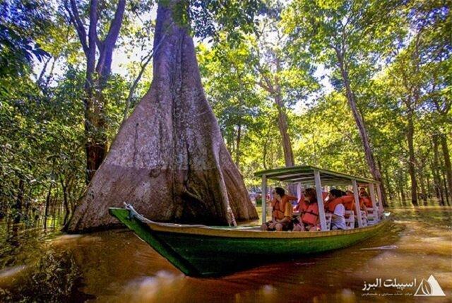 ماجراجویی ناب در قلب جنگل های آمازون و برزیل با اسپیلت البرز
