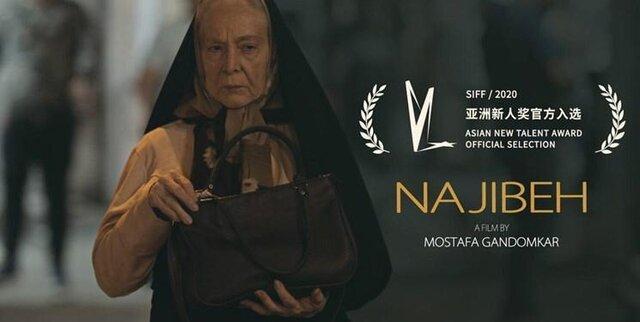 مهم ترین چالش سینمای مستقل به روایت کارگردان نجیبه