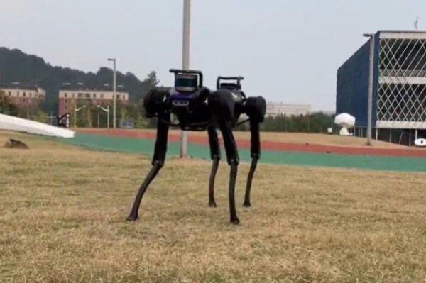 سگ رباتیک بعد از زمین خوردن بلند می گردد