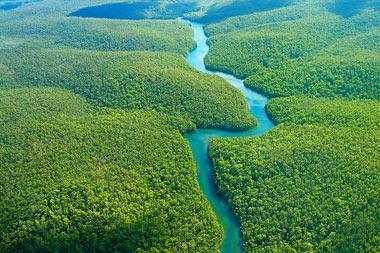ماهواره بومی برزیل جنگلهای آمازون را کنترل می نماید